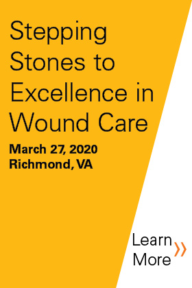 2020 Stepping Stones to Excellence in Wound Care Banner