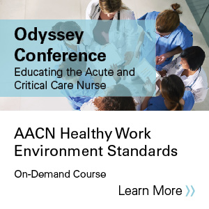 AACN healthy work environment standards: The foundation for an effective crisis response Banner
